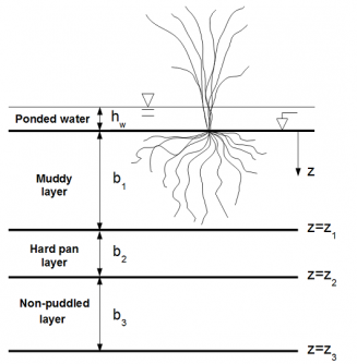 Monodimensional model schematization of paddy soil.