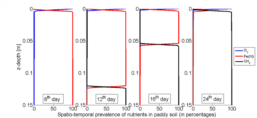 Spatio-temporal variation of nutrient prevalences in paddy soil, expressed in percentages.